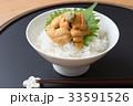 ウニ丼 雲丹 雲丹ご飯の写真 33591526