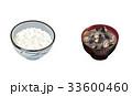 食べ物 ご飯 白米のイラスト 33600460
