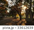 公園 33612639