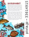 サカナ 魚 海のイラスト 33614915