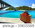 沖縄 阿嘉島 慶良間諸島の写真 33615569