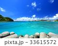 阿嘉島 海 港の写真 33615572