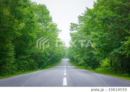 高原の道路、軽井沢。 33619559