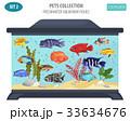 魚 魚類 アクアリウムのイラスト 33634676