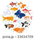 サカナ 魚 魚類のイラスト 33634709