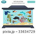 サカナ 魚 魚類のイラスト 33634729