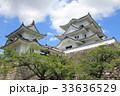 伊賀上野城 33636529