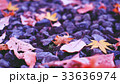 神社の落ち葉 33636974