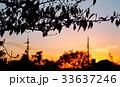 秋の夕暮れ 33637246