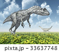 The dinosaurs Allosaurus and Camarasaurus 33637748