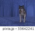 狼 イヌ科 動物のイラスト 33642241