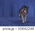 狼 イヌ科 動物のイラスト 33642246