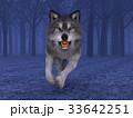 狼 イヌ科 動物のイラスト 33642251