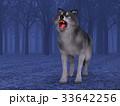 狼 イヌ科 動物のイラスト 33642256