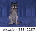 オオカミ 33642257