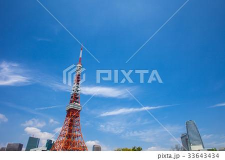 東京タワー 33643434