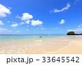 沖縄 ビーチ 夏の写真 33645542