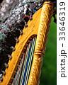 ラテンハープ(アルパ、パラグアイアン・ハープ) 33646319