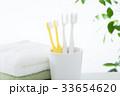 歯ブラシ 歯磨き デンタルケアの写真 33654620