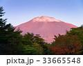 富士山 初冠雪 夜明けの写真 33665548