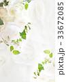 薔薇 花柄 背景素材のイラスト 33672085