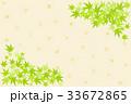 青紅葉 葉 新緑のイラスト 33672865