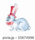 ホワイト ウサギ 兎のイラスト 33674996