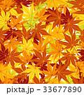 紅葉 秋 葉のイラスト 33677890