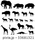 African fauna silhouette set Tropical zone animals 33681321