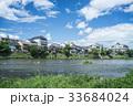 川 鴨川 夏の写真 33684024