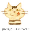 猫 動物 顔のイラスト 33685218
