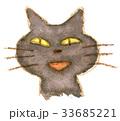 猫 動物 顔のイラスト 33685221