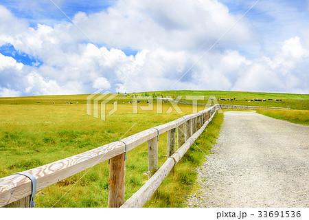 高原の風景、長野県、美ヶ原高原。 33691536