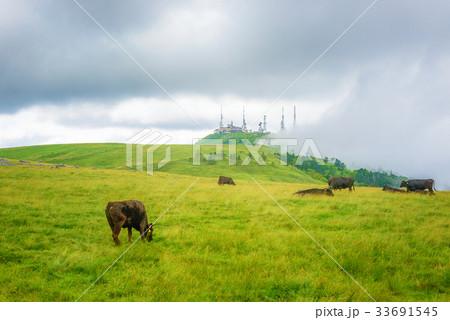高原の風景、長野県、美ヶ原高原。 33691545