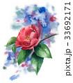 花 サザンカ 山茶花のイラスト 33692171
