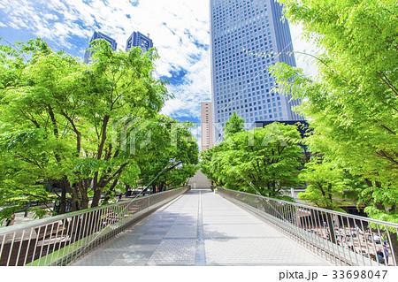 オフィス街の高層ビルと緑 33698047