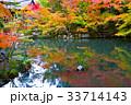天授庵の紅葉と池 33714143