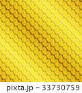 鱗 パターン 模様のイラスト 33730759