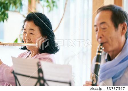 シニア 音楽サークル 33737547