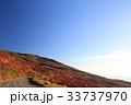 鳥海ブルーライン 紅葉 風景の写真 33737970