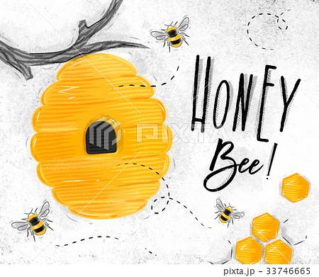 Poster honey beeのイラスト素材 [33746665] - PIXTA
