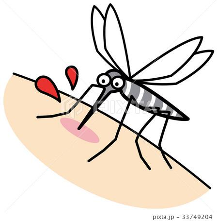 蚊 33749204
