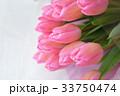 ピンクの花束 33750474