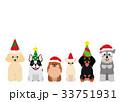 笑顔の犬のグループ 小型犬 クリスマス 33751931