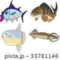海魚 33781146