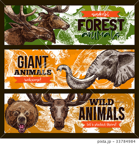 Wild animals vector zoo or save animal banners 33784984