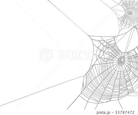 Black spider web silhouette on white background 33787472
