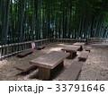 竹林公園 33791646