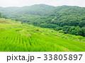 棚田の風景 33805897