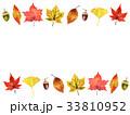 秋の植物フレーム 33810952